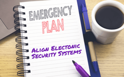 Emergency Preparedness And Electronic Security Systems