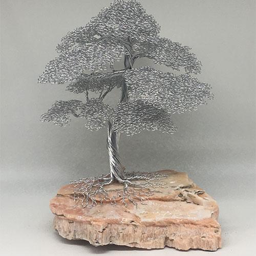 16_ajw-t116-largre-tree_9475