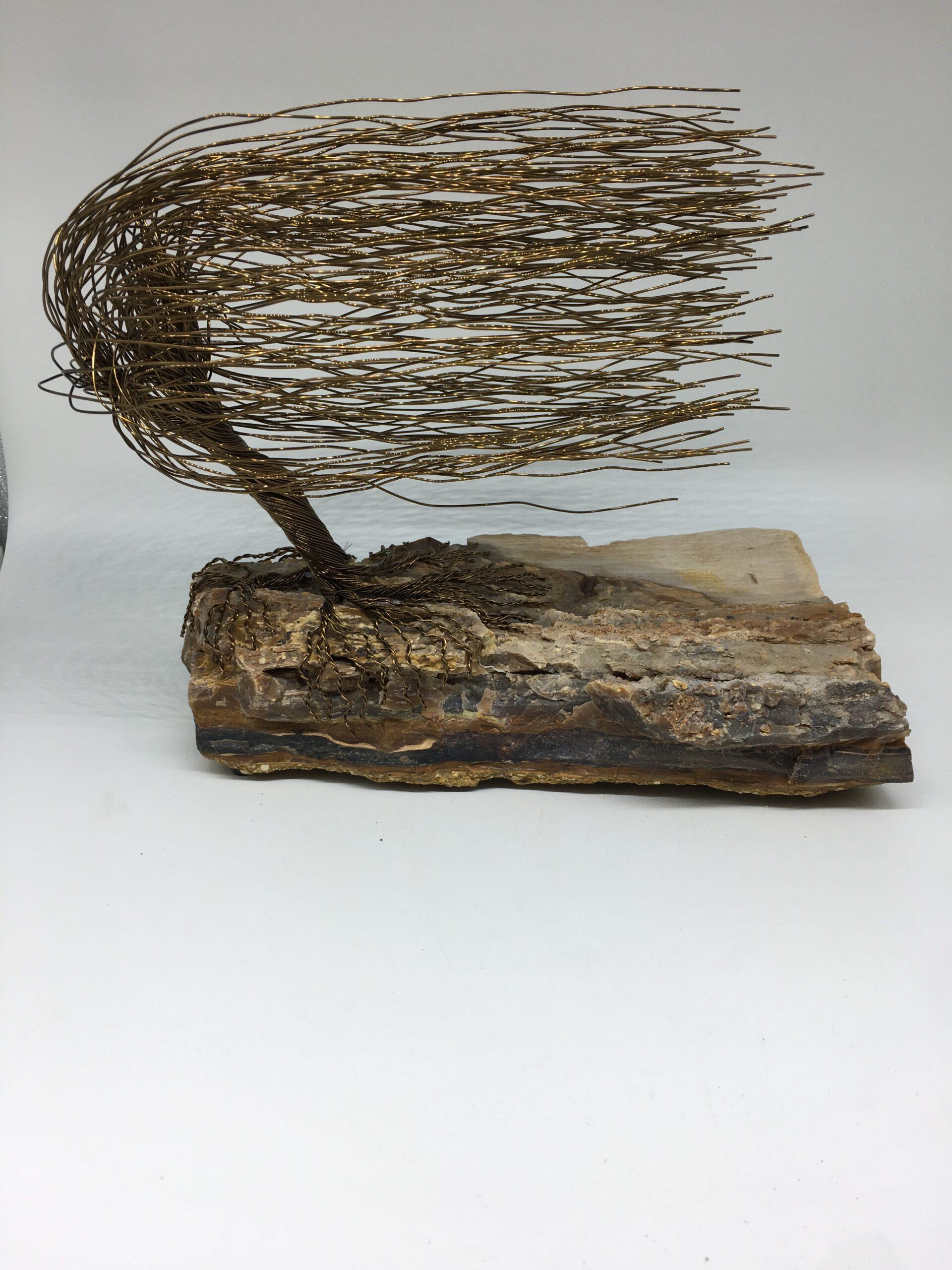 ajw-t135-wind-swept-tree