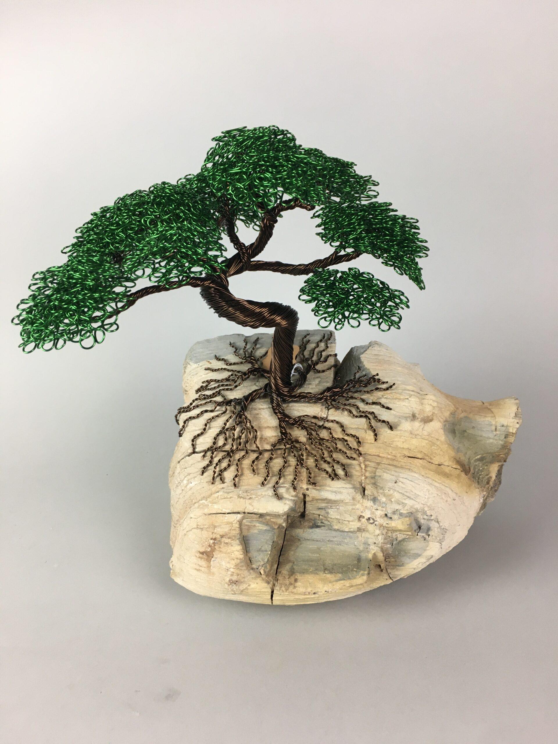 ajw-t146-bonsai-tree