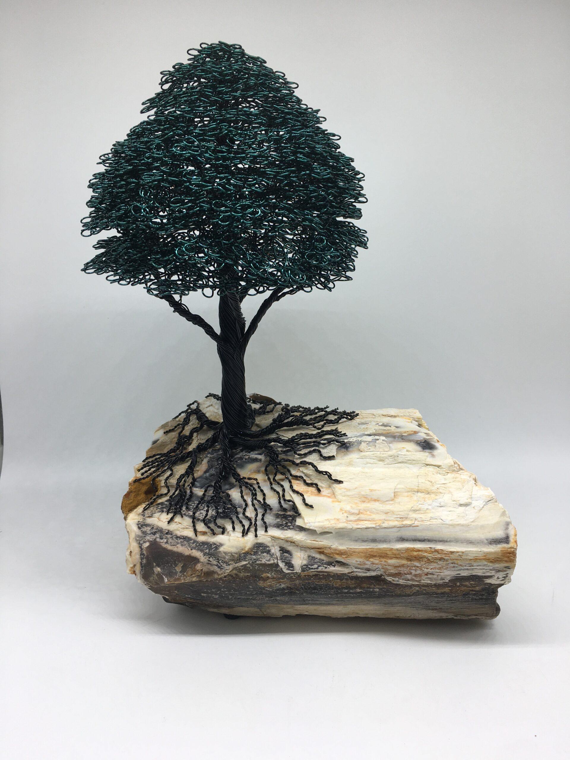 ajw-t149-north-american-tree