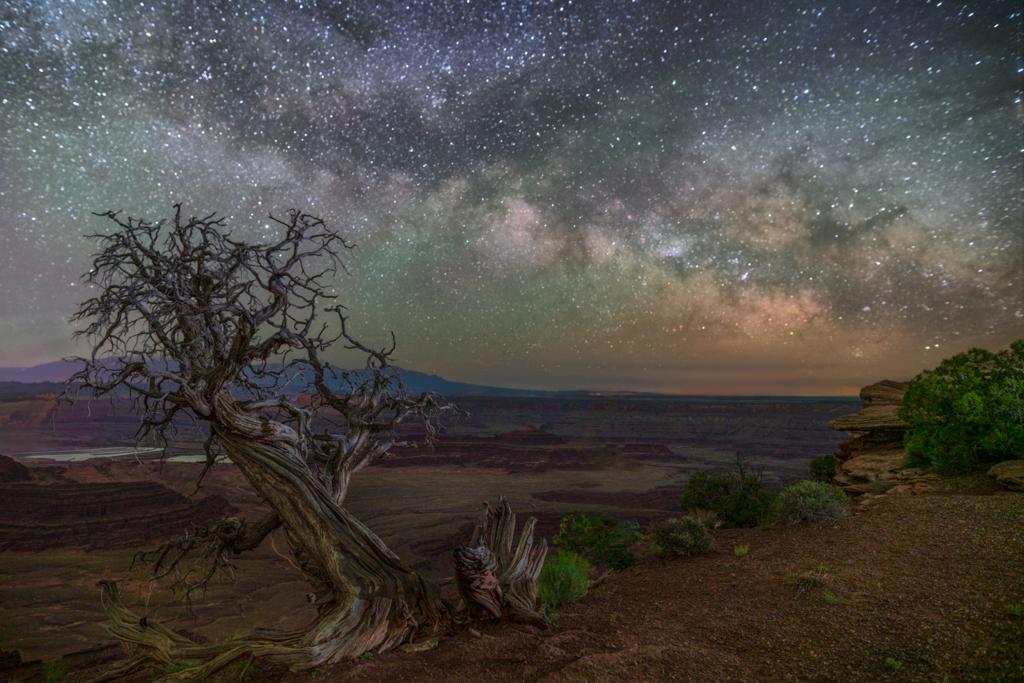 Made from 11 light frames by Starry Landscape Stacker 1.8.0.  Algorithm: Min Horizon Star Dupe
