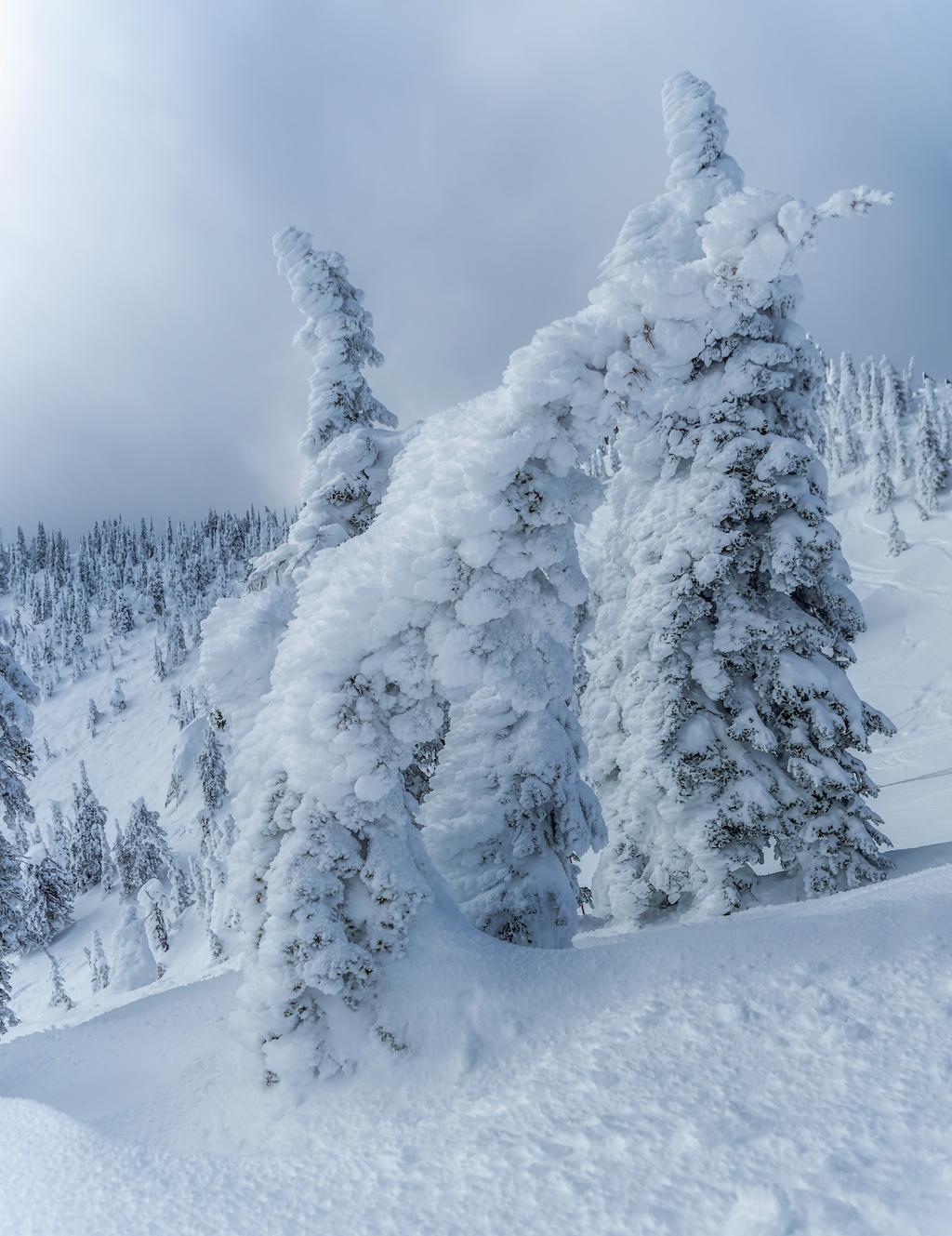 mm-snow-ghosts3jpeg