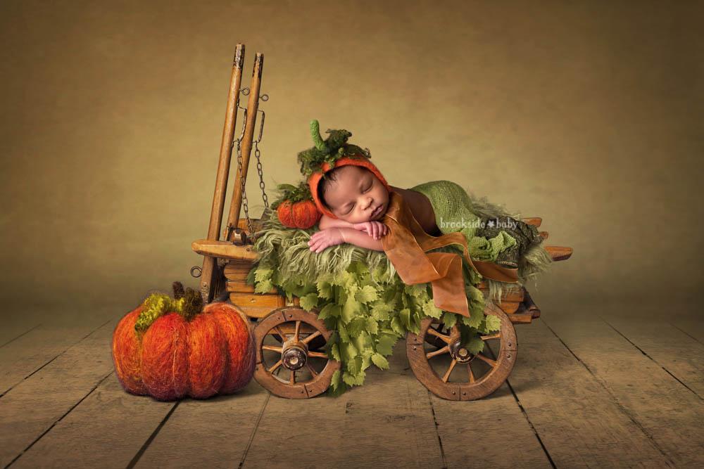 Carter – Brookside Baby-107