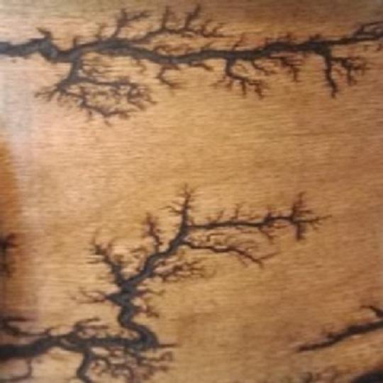 Maple Fractal