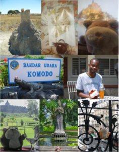 Top row, L to R: Grumpy balancing atop a termite mound in Botswana; studying a map of Ireland in a B&B in Shannon; NOT catching the view of Mont Saint-Michel, France, from our hotel room. Middle: Grumpy checking out Komodo Dragons in Indonesia; downing Fanta's with the locals in Zambia. Bottom: Grumps contemplates his empty glass of Merlot, oblivious to the 9th century Mahayana Buddhist temple behind him; so close to bathing at a sacred temple in Yogyakarta, Indonesia; examining the wrought iron work on a balcony in Paris.