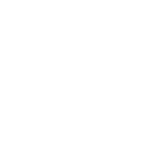 Traust Brewing Co.