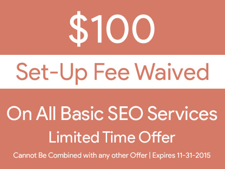 $100 setup fee waived on all Basic SEO Services in November of 2015
