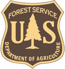Forest Service Repairing Riparian Area