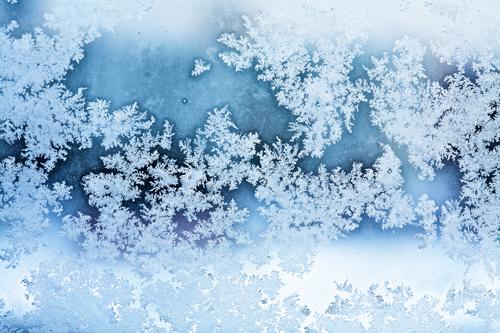 Wintery Weekend for Jackson Hole