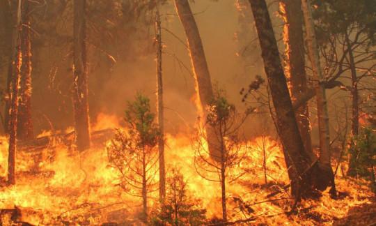 Fire Continues to Burn Near Old Faithful