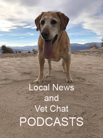 Listen to News on demand!!