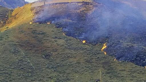 Fire Burned 102 Acres