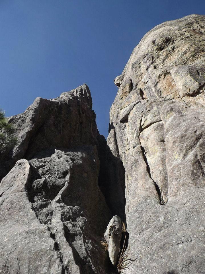 Contact Chick Climber
