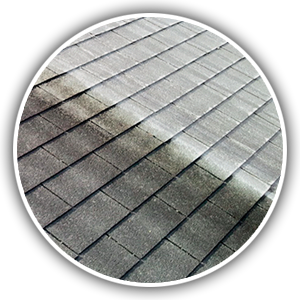 roof-stain-soft-washing-cincinnati-oh-ky-in
