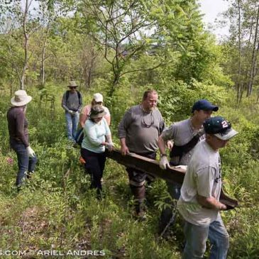 Stewards of Cootes Watershed