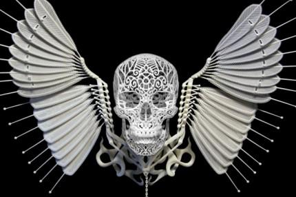Anatomica di Revolutis by Josh Harker