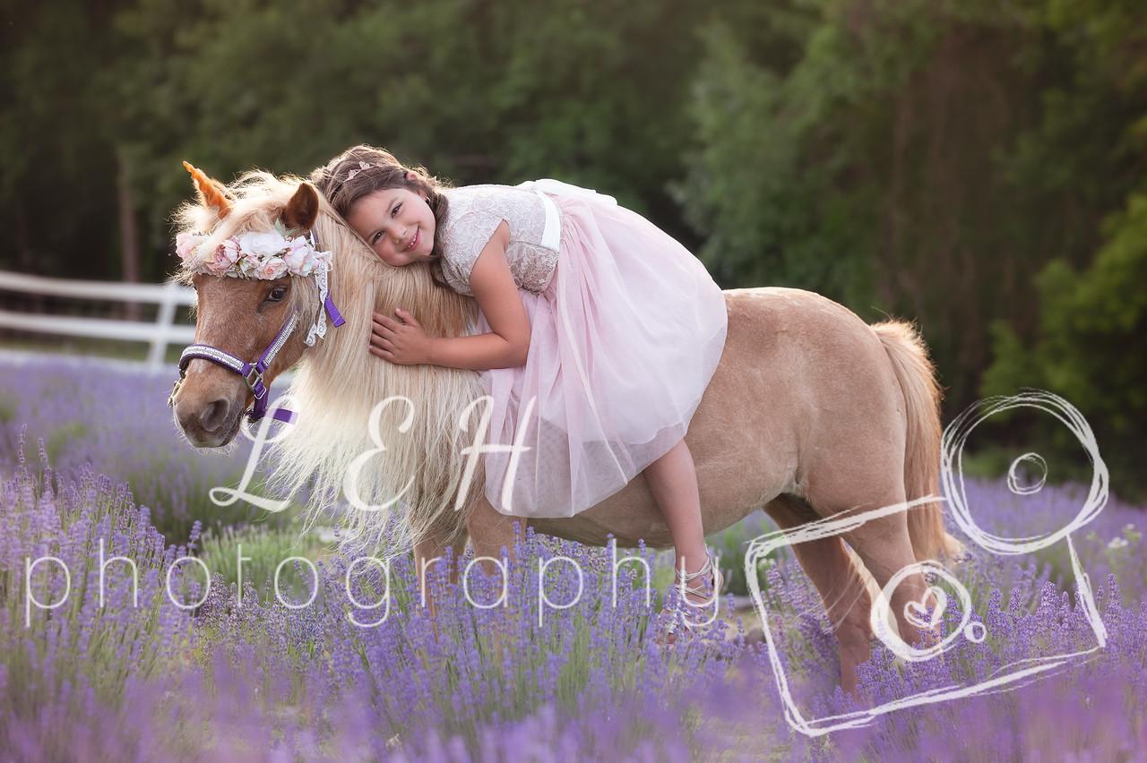 NOW BOOKING – Unicorn Mini Photo Sessions