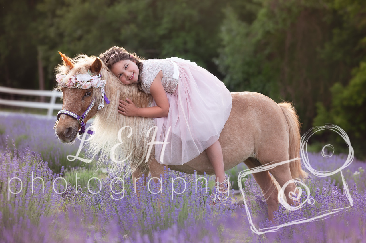 NOW BOOKING – Unicorn Mini Photo Sessions