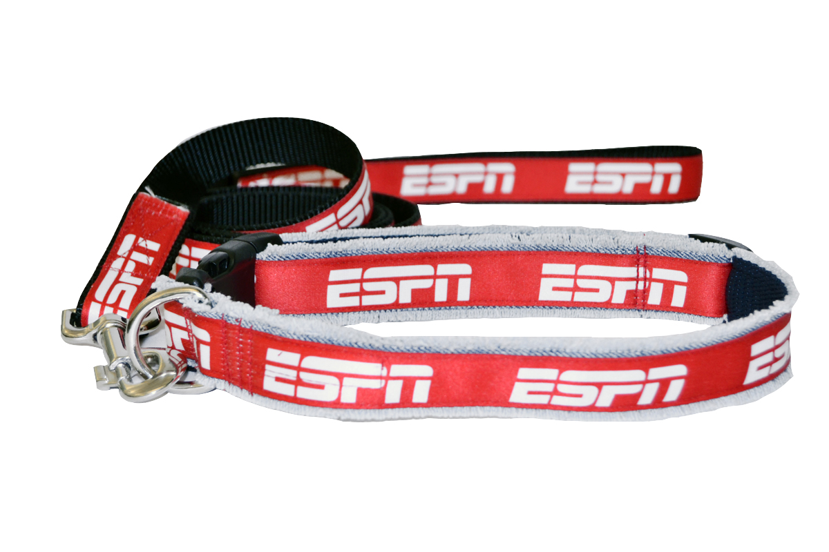 ESPN Denim Dog Leash and Collar