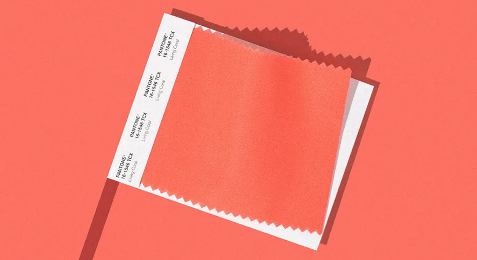 Introducing Pantone's Color of the Year for 2019 – PANTONE 16-1546 Living Coral