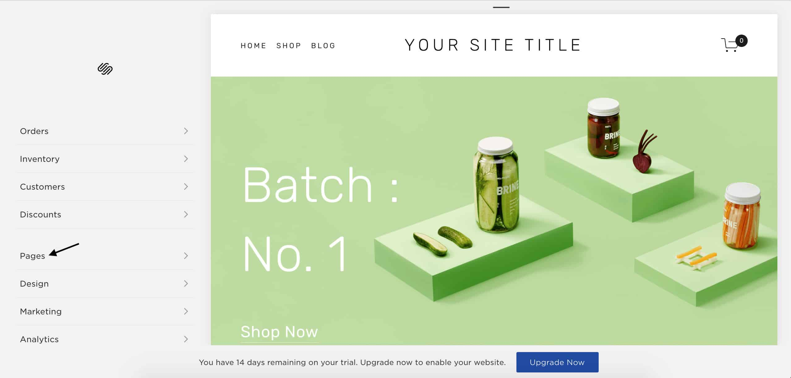 best websites squarespace