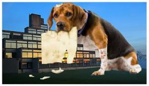 CRU Dog Ate Homework