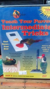 Teach your Bird Intermediate Tricks