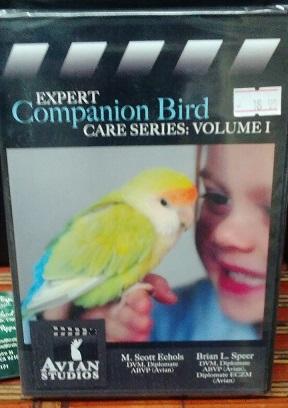 Expert Companion Bird Video