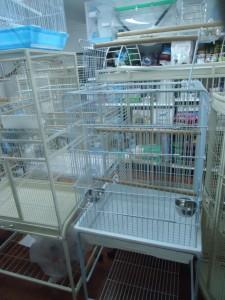 Medium White Cage