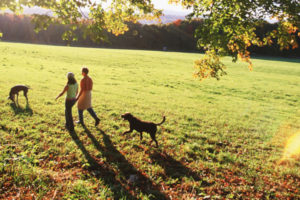 family-easy-hikes-topic-ttd-fall