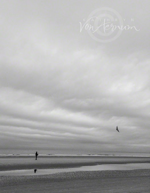 Go Fly A Kite – Black and White Friday