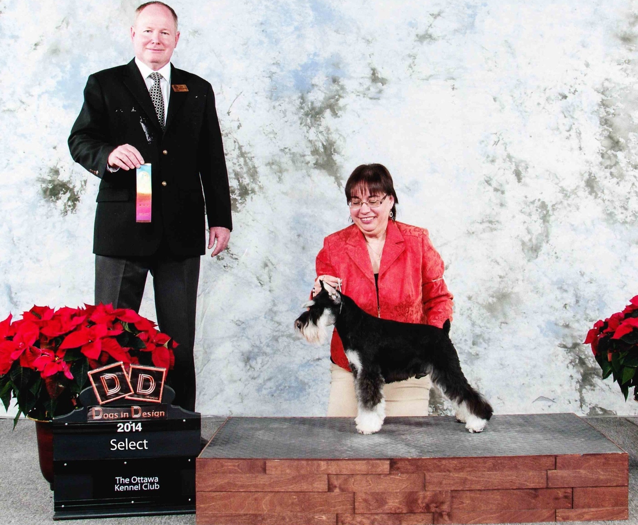 Ch Sailer's Angel of Darkness wins Select ribbon at Ottawa show as a Special