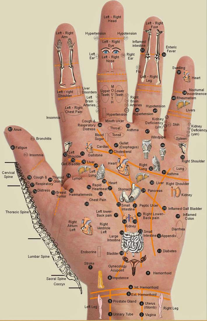 handpoints1