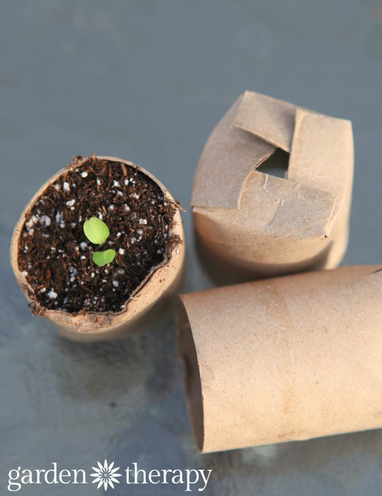Stop throwing away empty toilet paper rolls. Here's 11 ways to reuse them around the house 38