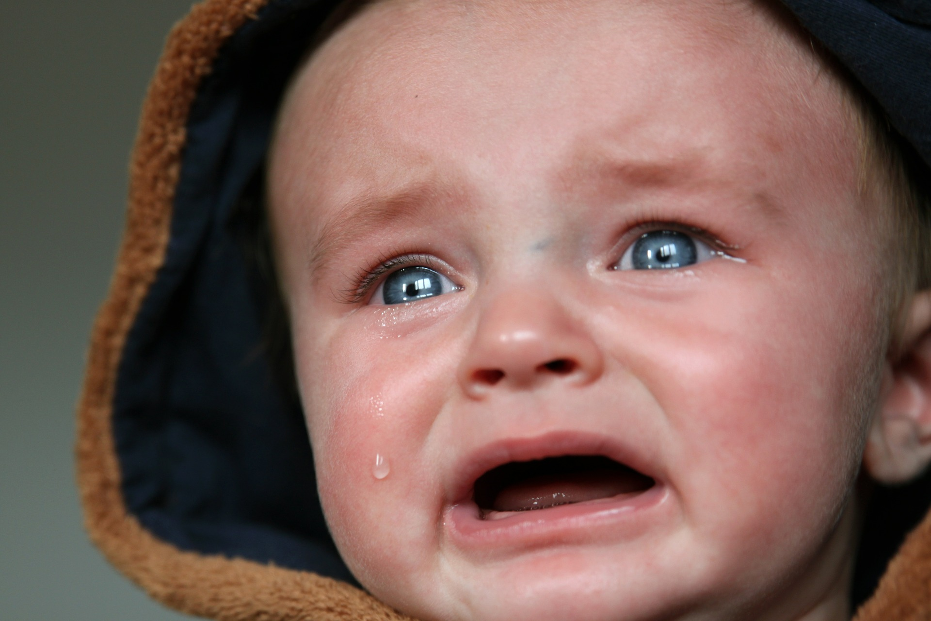 Funniest Expression of Babies That Made Me Feel Awww 28