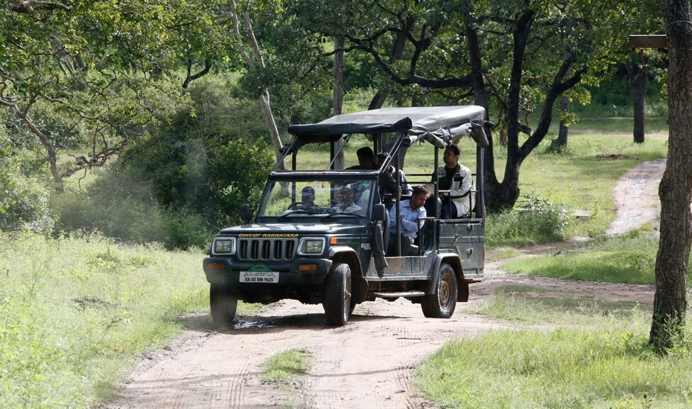 """WildTrails of India - """"Aggregator App for Your Wildlife Trip"""" (We are an Aggregator App, bringing all of Indian wildlife & Nature resorts into one place to help YOU find your ideal destination/resort based on your personal preferences!! Will aggregate Wildlife/Nature Resorts, National parks, (bird & animal) Sanctuaries, Tiger & Elephant reserves, Organized photographic oriented wildlife tours, Camera, Lens & related equipment Rentals, Cab/Car Rentals, Photography Workshops, info about Indian Animals & birds, Tourist Guides and lot more. Currently we are covering Bandipur, Nagarhole (Kabini & Coorg), Coorg & Bird Sanctuaries close to Bangalore.)"""