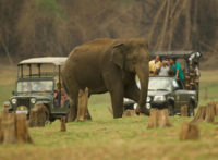 Jeep Safari At Kabini