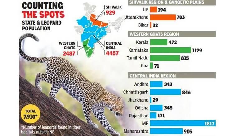 leopard census in india