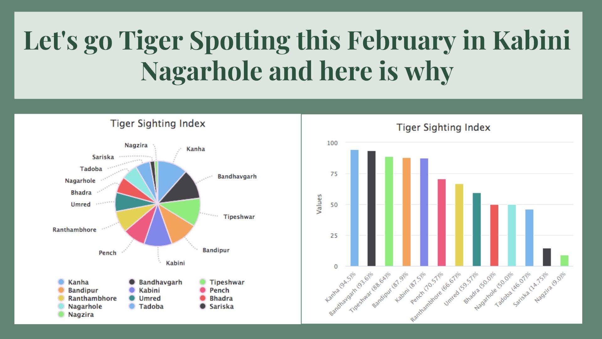 Tiger Sightings