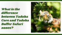 Tadoba budder and core zone