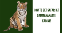 Get safari at kabini