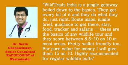 wildtrails testimonials