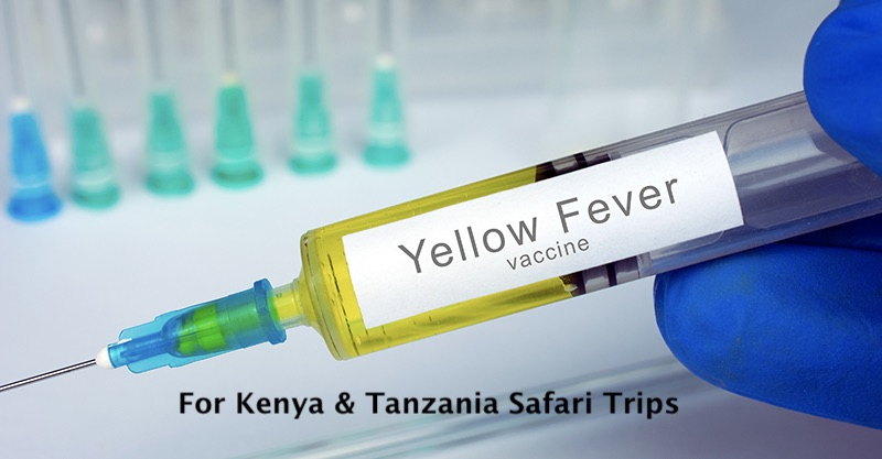 Yellow Fever Vaccination in India & the details for Kenya & Tanzania Safari Trips