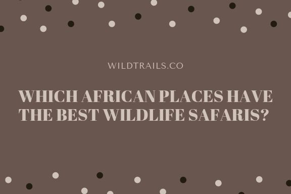 WHICH AFRICAN PLACES HAVE THE BEST WILDLIFE SAFARIS?