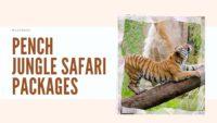Pench Jungle Safari Packages
