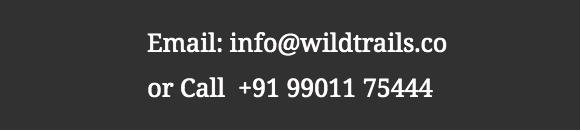 Wildtrails Contact No