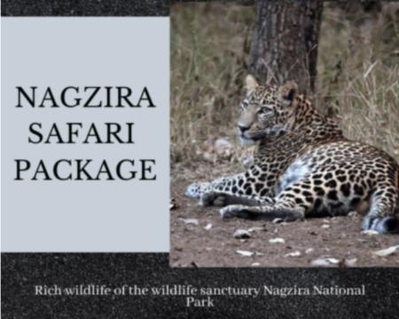 nagzira safari package