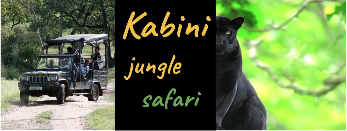 Kabini jungle safari