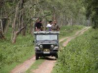 Jeep Safari At Bandipur National Park